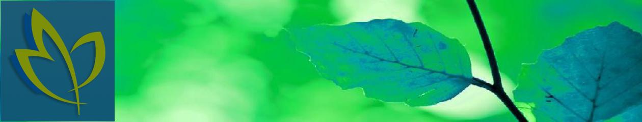 Van Beest Groenprojecten